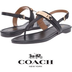 EUC Coach Catherine black gold thong sandal 8.5